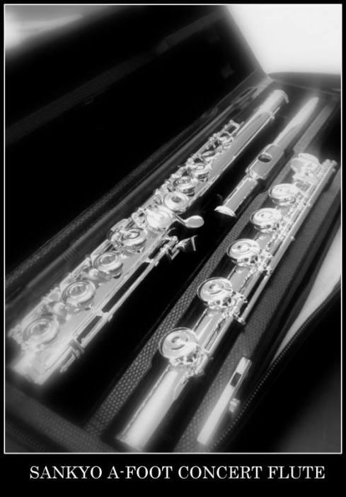 Nouvelle flûte Patte de LA!
